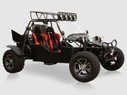 Power Buggy  BMS 1000cc with FREE DELIVERY!*  FREE HELMET