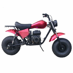 TrailMaster MB200-2 Mini Bike  Free Shipping - 196cc Off-Road Mini Bike - With Upgraded Torque Converter