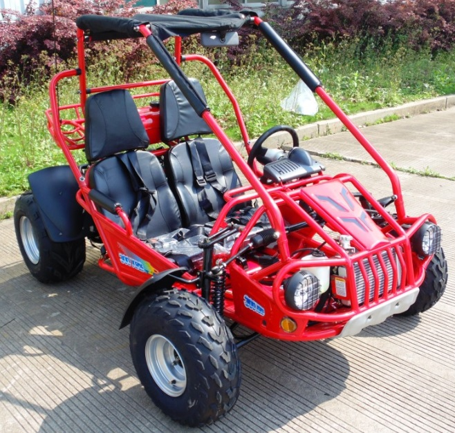 Trailmaster Xrs 300cc Go Kart Buggy Liquid Cooled