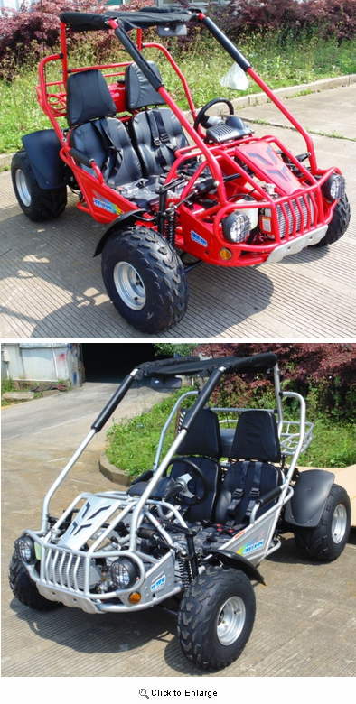 Trailmaster 300 XRS 300cc Ultra Buggy-Go Kart - FREE SHIPPING -