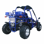 TRAILMASTER  XRX-300cc water cooled DuneBuggy-Go Kart  - Power & Torque -