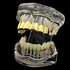 Gold Six Tooth Top Grillz