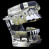 Cartel Silver 6/6 Grillz Set