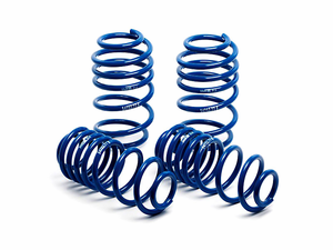 H&R Super Sport Lowering Springs for 2005-09 Mustang V6 & GT