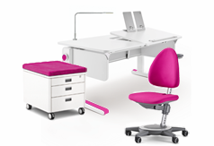Deluxe Package Moll Desk Combo Bundle