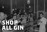 Shop All Gin