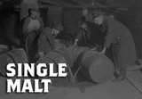 Single Malt Whiskey