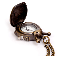 Ladybug Pocket Watch