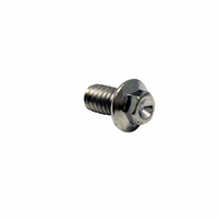 "AEM Tru-Time Adjustable Cam Gear Bolt. 5/16"" X 1/2"""