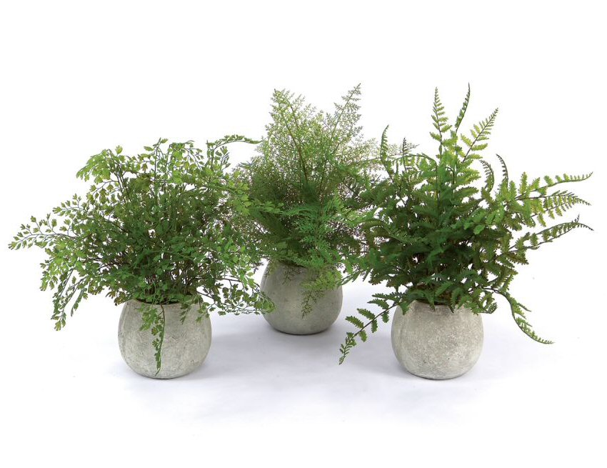 "14"" artificial plastic potted ferns, set of 3 - silk plants - melrose"