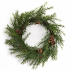 """22"""" Pine and Pinecones Silk Wreaths, Set of 2"""