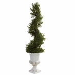 3' Rosemary Spiral Silk Tree with Indoor Outdoor Urn