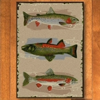 3' x 4' Pebble Creek Trout Wildlife Rectangle Scatter Rug
