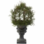"""30"""" Pond Cypress Topiary Silk Plant with Indoor Outdoor Urn"""