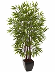 5' Bamboo Silk Tree with Planter