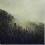 Age of Reason Foggy Forest Scene Wrapped Canvas Giclee Print