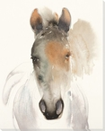 Alert Boy Horse Wrapped Canvas Giclee Print Wall Art
