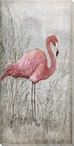 American Flamingo Bird I Wrapped Canvas Giclee Print Wall Art