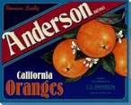 Anderson Oranges Wrapped Canvas Giclee Print Wall Art
