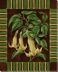 Angel's Trumpet Stripe Flower Wrapped Canvas Giclee Print Wall Art