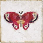 Antique Butterfly I Wrapped Canvas Giclee Print Wall Art