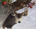 Apple Deer Wrapped Canvas Giclee Print Wall Art
