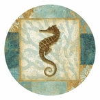 Aqua Seahorse Absorbent Beverage Coasters by Eleanor Rahim, Set of 12