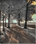 Arcola Driveway Trees Vertical Wrapped Canvas Giclee Print Wall Art