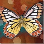 Assorted Colored Butterfly Study Wrapped Canvas Giclee Print