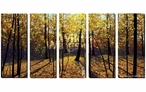 Autumn in the Woods Wrapped Canvas Giclee Print Wall Art, Set of 5