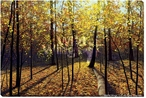 Autumn in the Woods Wrapped Canvas Giclee Print Wall Art
