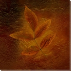 Autumn Leaves Six Wrapped Canvas Giclee Print Wall Art