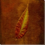 Autumn Leaves Two Wrapped Canvas Giclee Print Wall Art