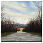 Autumn Road Country Road Wrapped Canvas Giclee Print