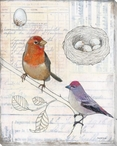 Aviary Bird Scrapbook II Wrapped Canvas Giclee Print Wall Art