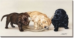 Bad Boys Lab Pups Wrapped Canvas Giclee Print Wall Art