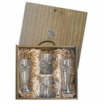 Bald Eagle Bird Pilsner Glasses & Beer Mugs Box Set w/ Pewter Accents