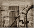 Barbed Wire Wrapped Canvas Giclee Art Print Wall Art