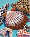 Bay Scallop Mix Wrapped Canvas Giclee Print Wall Art