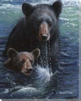 Bearly Swimming Bear and Her Cub Wrapped Canvas Giclee Print