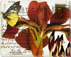 Bees Butterflies & Postcards II Wrapped Canvas Giclee Print