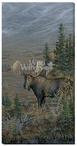 Big Country Moose Wrapped Canvas Giclee Print Wall Art