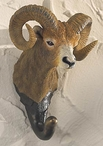 Bighorn Ram Hand Painted Sculpted Single Wall Hooks, Set of 3