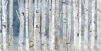 Birch Trees I Wrapped Canvas Giclee Art Print Wall Art