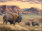 Bison Buttes Wrapped Canvas Giclee Print Wall Art