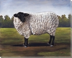 Black and White Sheep Wrapped Canvas Giclee Print Wall Art