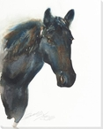 Black Beauty Horse Wrapped Canvas Giclee Print Wall Art