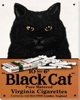 Black Cat Wrapped Canvas Giclee Print Wall Art