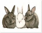 Black & White Rabbits Wrapped Canvas Giclee Print Wall Art