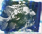 Blue Lion Fish 2 Wrapped Canvas Giclee Print Wall Art